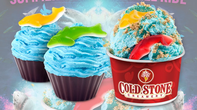 picture relating to Cold Stone Printable Coupons known as Chilly stone specials 7 days / Khaugalideals hyderabad
