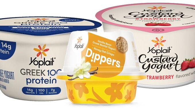 Yoplait Brings Back Custard, Debuts Greek 100 Protein And Yoplait Dippers