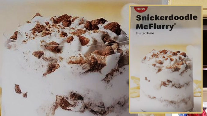 McDonald's Spotted Selling New Snickerdoodle McFlurry
