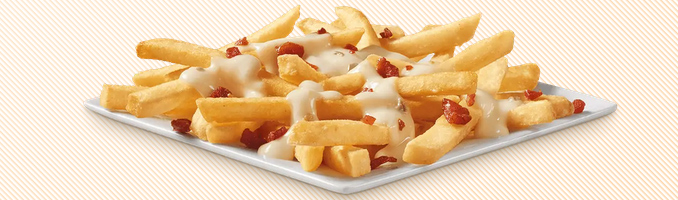 New Bacon Queso Topped Fries